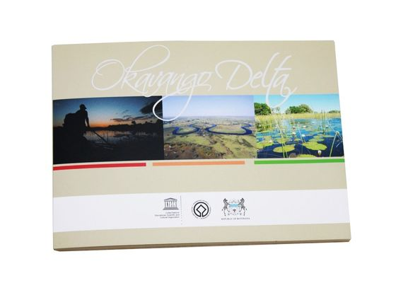 China Promotional Video Brochure Card with Magnetic switch , ON / OFF button switch supplier