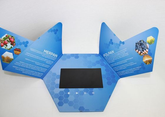 Rechargeable Video In Print Brochure , custom lcd video brochure card for promotion